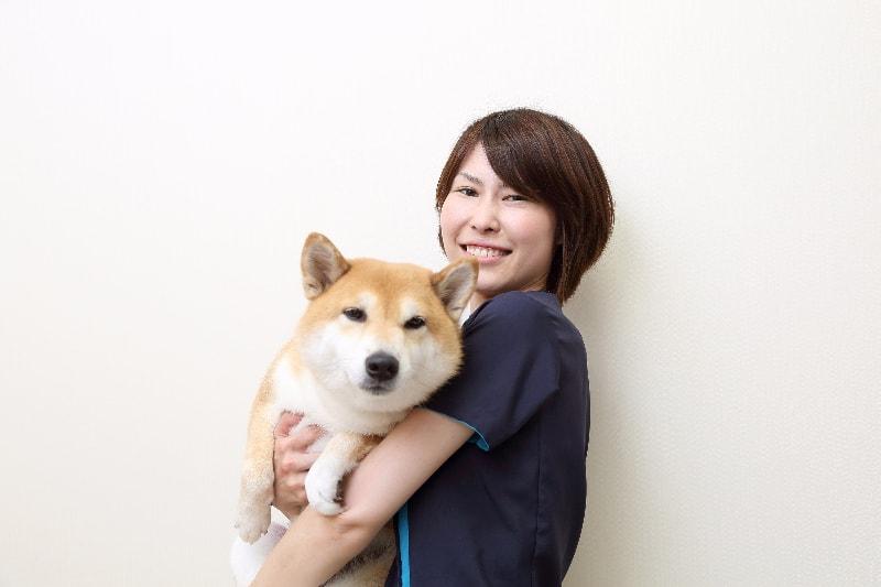 認定動物看護師 JAHA認定家庭犬しつけインストラクター