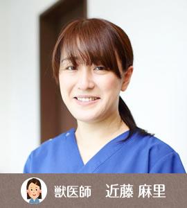 獣医師紹介